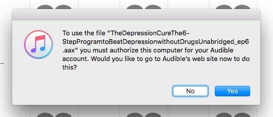 do you want to login to audible